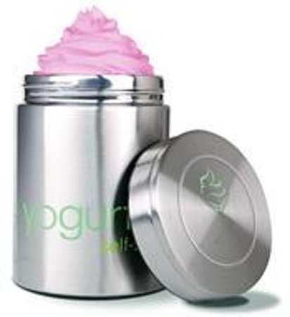 Yogurtini Lone Tree Containers keep your froyo frozen for hours