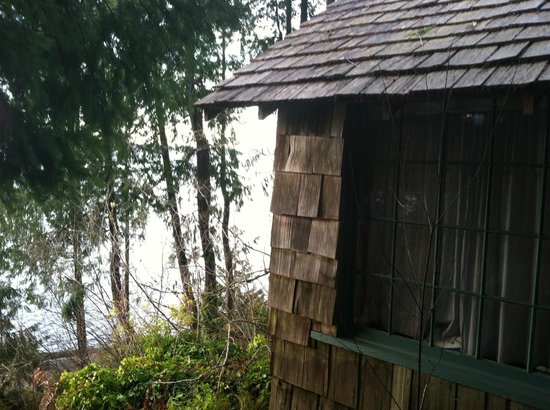 Amanda Park, Вашингтон: Lake Quinault from outside Cabin Angeles