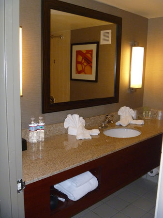 Holiday Inn Perimeter/Dunwoody: Bathroom