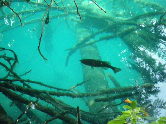 Green Lakes State Park: Crystal clear water