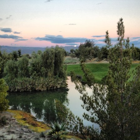 Marriott's Shadow Ridge: view from our porch
