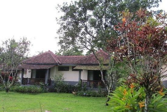 Margo Utomo Hillview Cottages