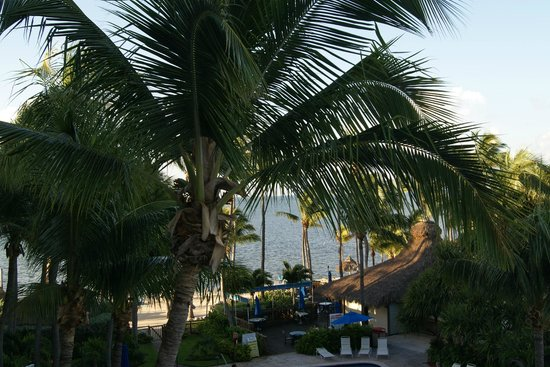 Hampton Inn and Suites Islamorada: View from the balcony