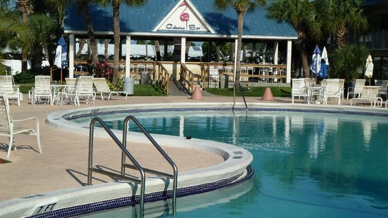 Flamingo Resort: The sparkling pool and Cabana bar