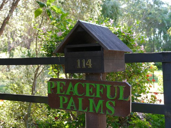 Peaceful Palms B&B: love letter boxes