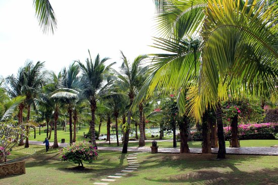 Pandanus Resort: Garden