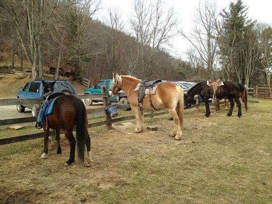 Cullowhee,  : Arrowmont Stables