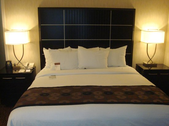 DoubleTree Suites by Hilton Minneapolis: Room 418