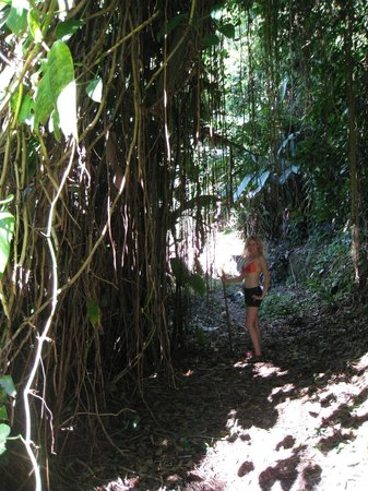Casa Cubuy Ecolodge: Hike that follows the old water pipes