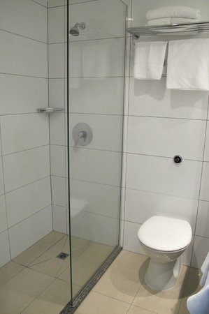 Copthorne Hotel Wellington Oriental Bay: Modern shower