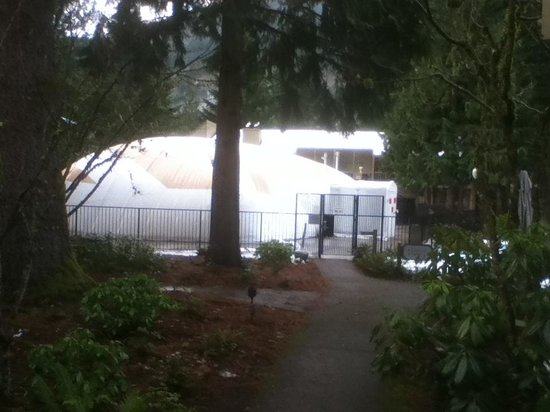 The Resort at The Mountain: Winter view of pool area dominated by inflated pool tent.