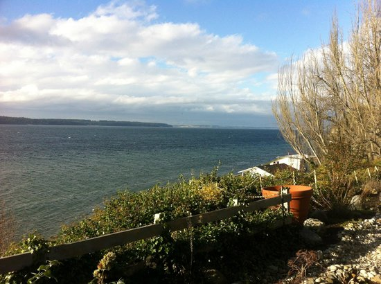 Camano Island Inn: View from the room