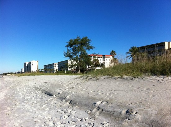 Turtle Crawl Inn: The hotel from the beach