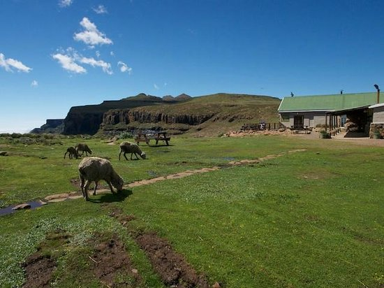 Sani Pass, Lesotho: Sani Mountain Lodge