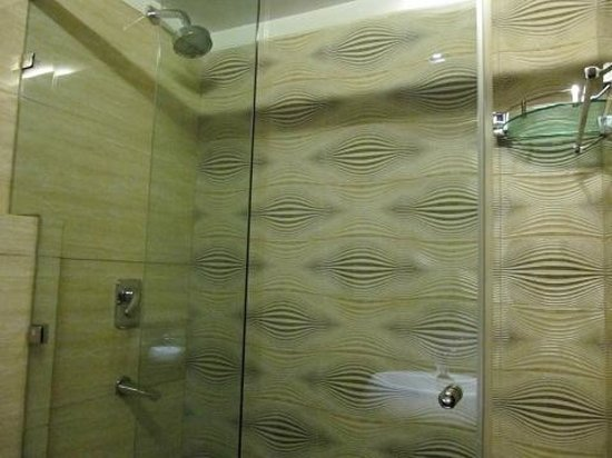Metropolis Tourist Home: 202 bathroom shower with rain shower head