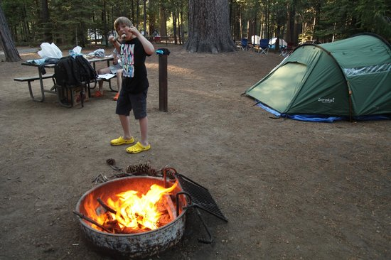 Hodgdon Meadow Campground: camping hodgon meadows parc de Yosemite