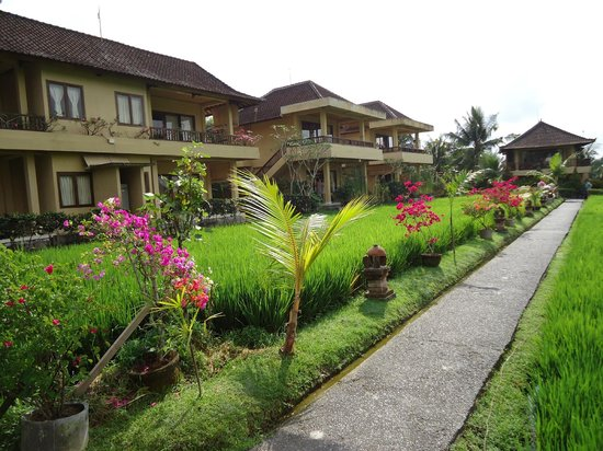 ศรี บังกาโลส์ อุบุด: Villas at the back property, few steps from the entrance