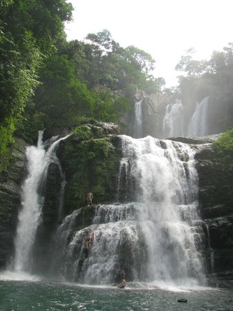 Jungle Joy Retreat: Local Waterfalls
