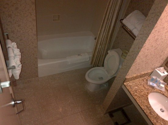 The Whitney Wyndham Hotel : Low rise bath tub 