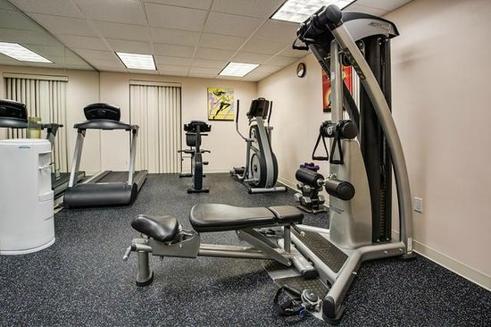 Holiday Inn Express Hotel & Suites Tampa Northwest - Oldsmar: 24 Fitness Center