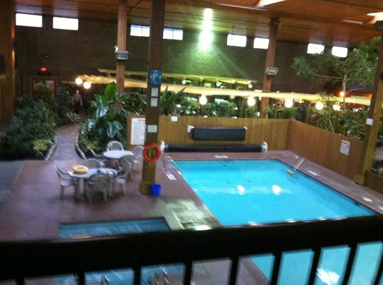 BEST WESTERN Rainbow Country Inn: View from our room into the indoor garden and pool area.
