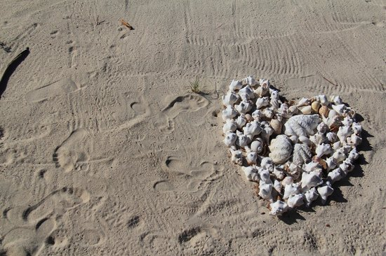 Anantara Medjumbe Island Resort & Spa: the shells in front of the room