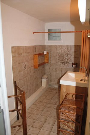 Hotel Boquier : Bathroom