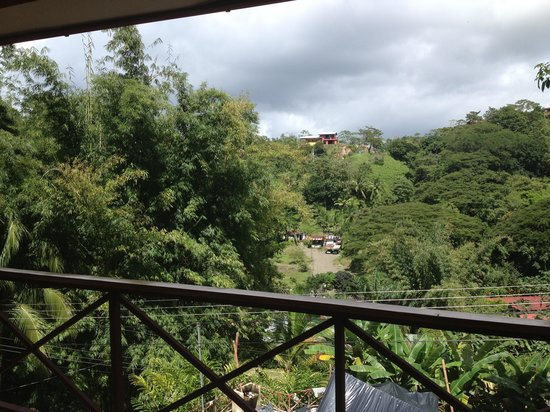 Manuel Antonio Estates: View