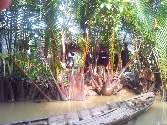 Boattrip picture of ben tre ben tre province tripadvisor for Jardin du mekong homestay