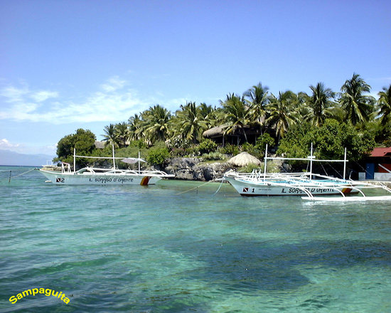 Photo of Sampaguita Resort Moalboal