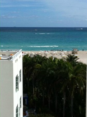 Shore Club South Beach Hotel: View from our corner room