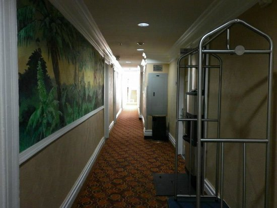 Adante Hotel: Hallway.