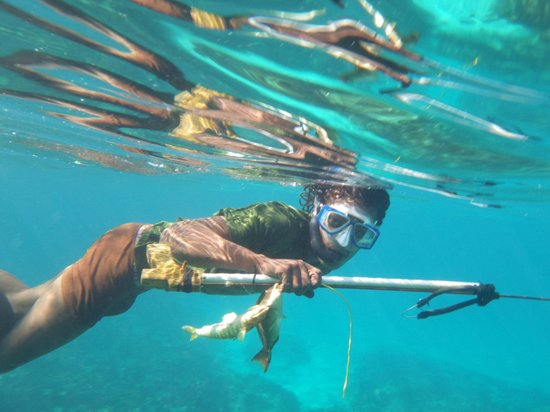 Snorkeling in front of Citronella -- spear fisherman