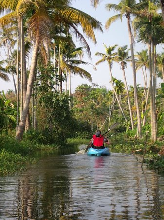 Kerala Kayaking backwaters. Fabulous.