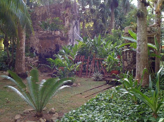 Hacienda Chichen: Timeless ancient ruins in a lush tropical environment.