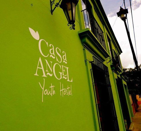 Casa Angel Youth Hostel: verde es vida! casa angel tambien!