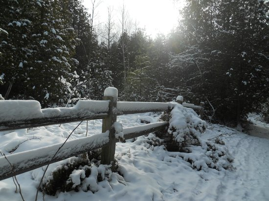 Little Sweden: Woodsy hiking and ski trail