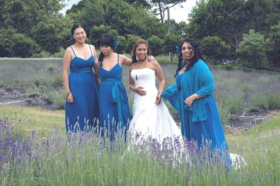 Coatesville Lavender Hill Luxury Bed & Breakfast: Nadia and her attendants, Dec 12