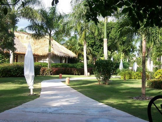 Zoetry Agua Punta Cana: View of grounds