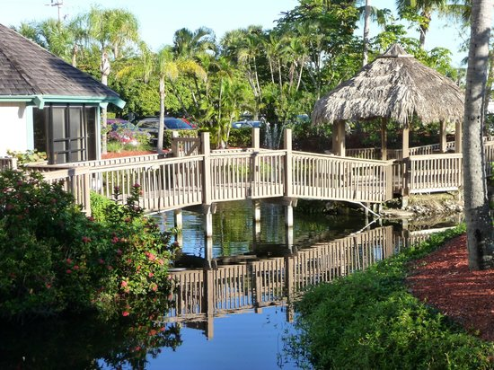 Pointe Estero Beach Resort: Grounds