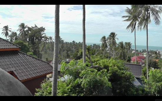 Seaview Paradise Resort Hotel: View from the balcony