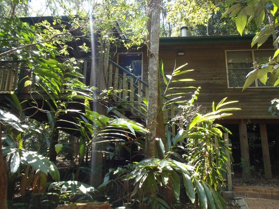 Narrows Escape Rainforest Retreat: Cottage