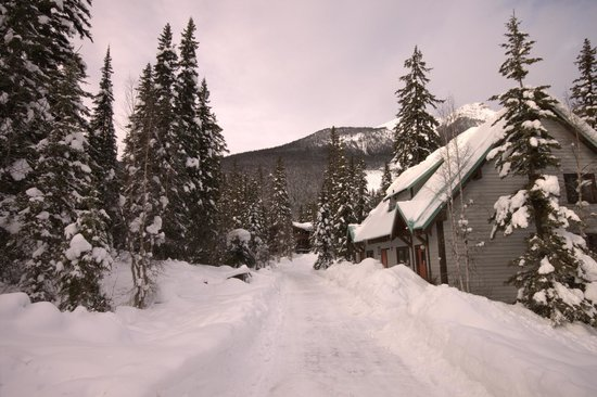 Emerald Lake Lodge: From the bedroom lodges towards the main lodge