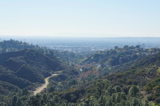 Hollywood Bed & Breakfast: View from the top of Beachwood Canyon