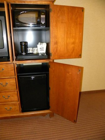 Olympic Lodge: Microwave and fridge