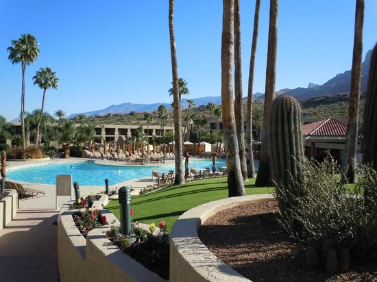 Hilton Tucson El Conquistador Golf & Tennis Resort: Pool by day