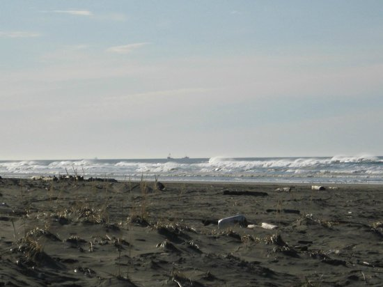 Andersen's RV Park: December on the beach