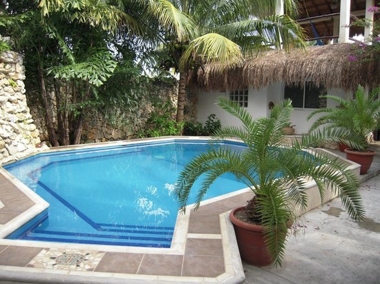 Baldwin's Guest House Cozumel: The pool with the casita in the background