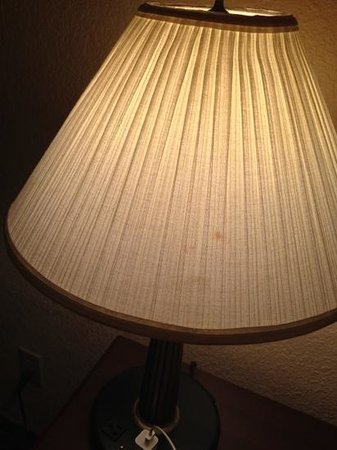 Plaza Hotel: stained lampshade (one of several)