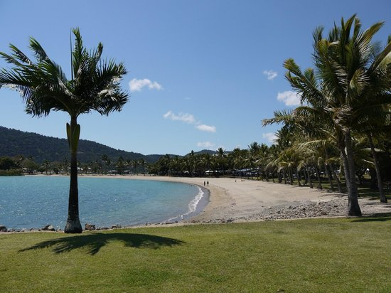 Backpackers by the Bay: Beautiful Airlie Beach
